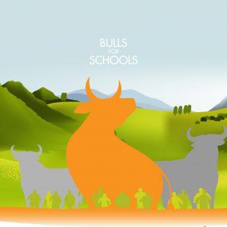 bulls for schools v2 graphic-01